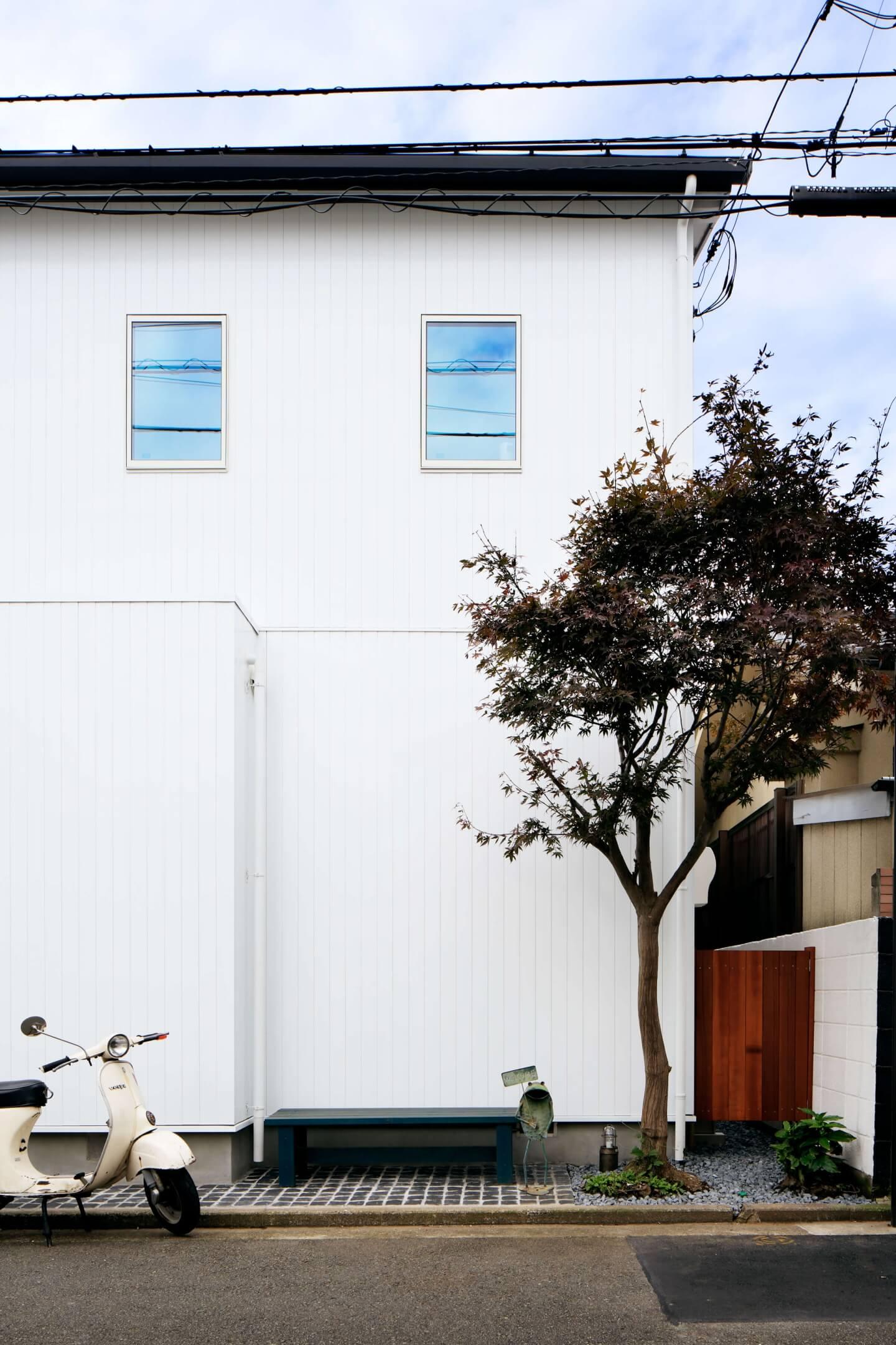 吉祥寺の住宅の外観、シンボルツリー
